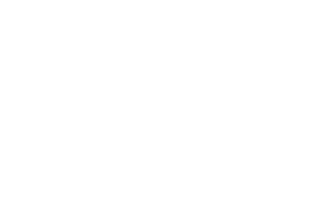 DD Logo - Diligent Decontamination & SC