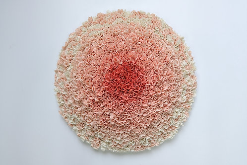 Decipher coral wall mounted porcelain artwork by sara dodd