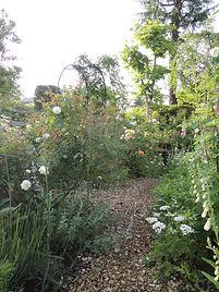 初夏の庭.JPG
