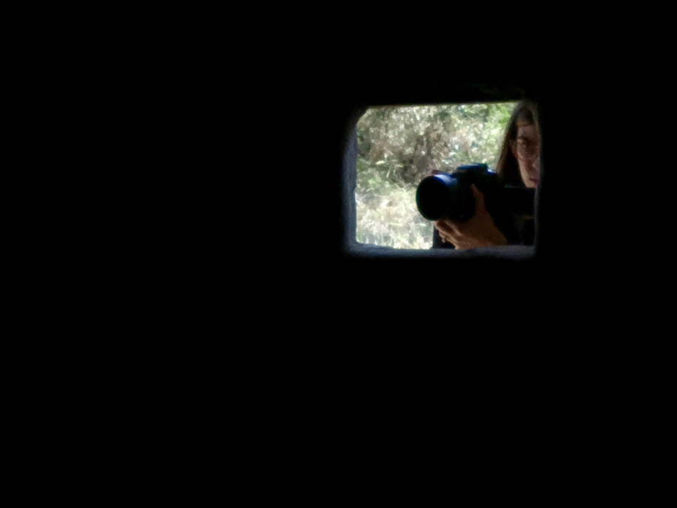 Sydney shooting video through the window