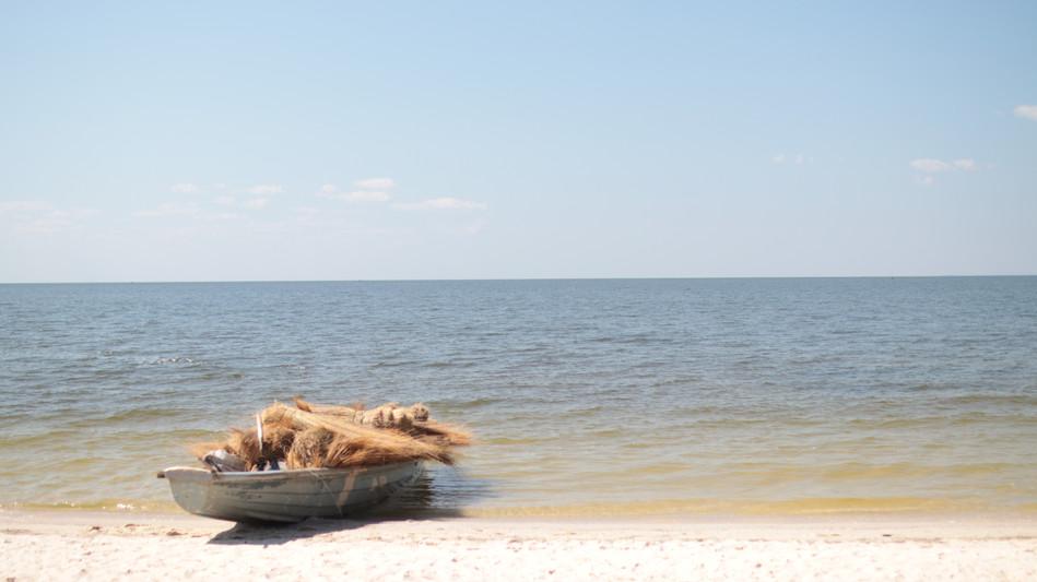 Boat full of grasses by Lake Bangweulu