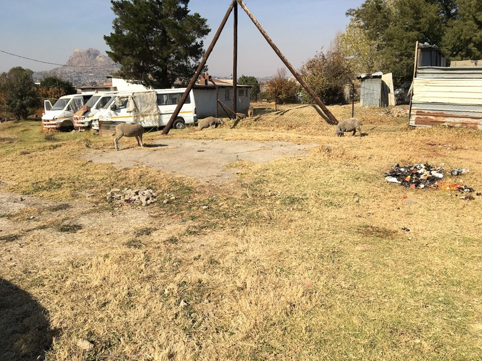 Lawn Care. — in Maseru, Lesotho.