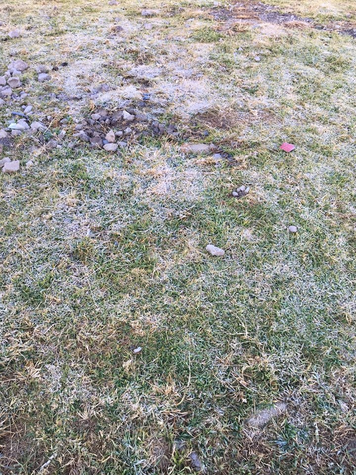 It may not look like it, but that is frost on the ground. FROST! — in Maseru, Lesotho.