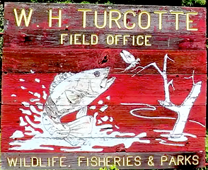 Turcotte sign.png