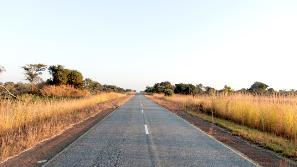 Not much traffic out in the bush.