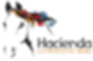 Logo Hacienda 2018.png