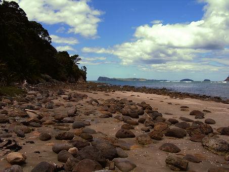 Bild Strand mit Steine
