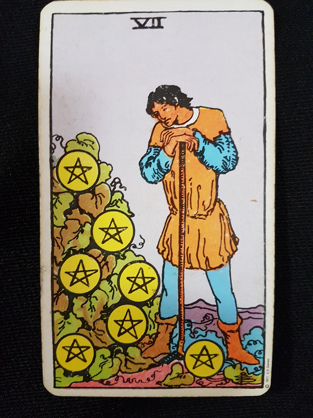 Seven of Pentacles - lynsreadings.com