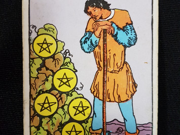 The 7 of Pentacles