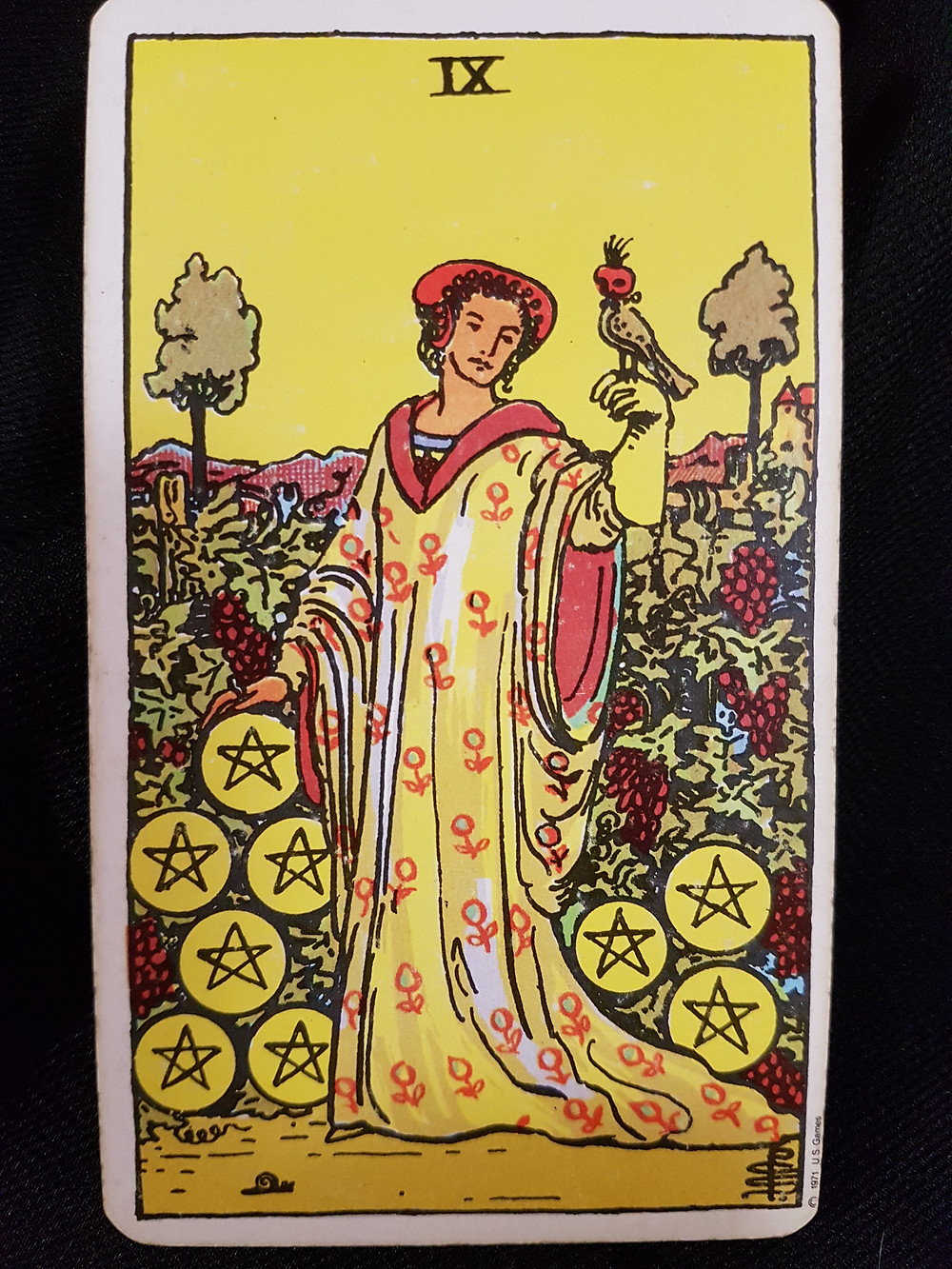 Nine of Pentacles - lynsreadings.com