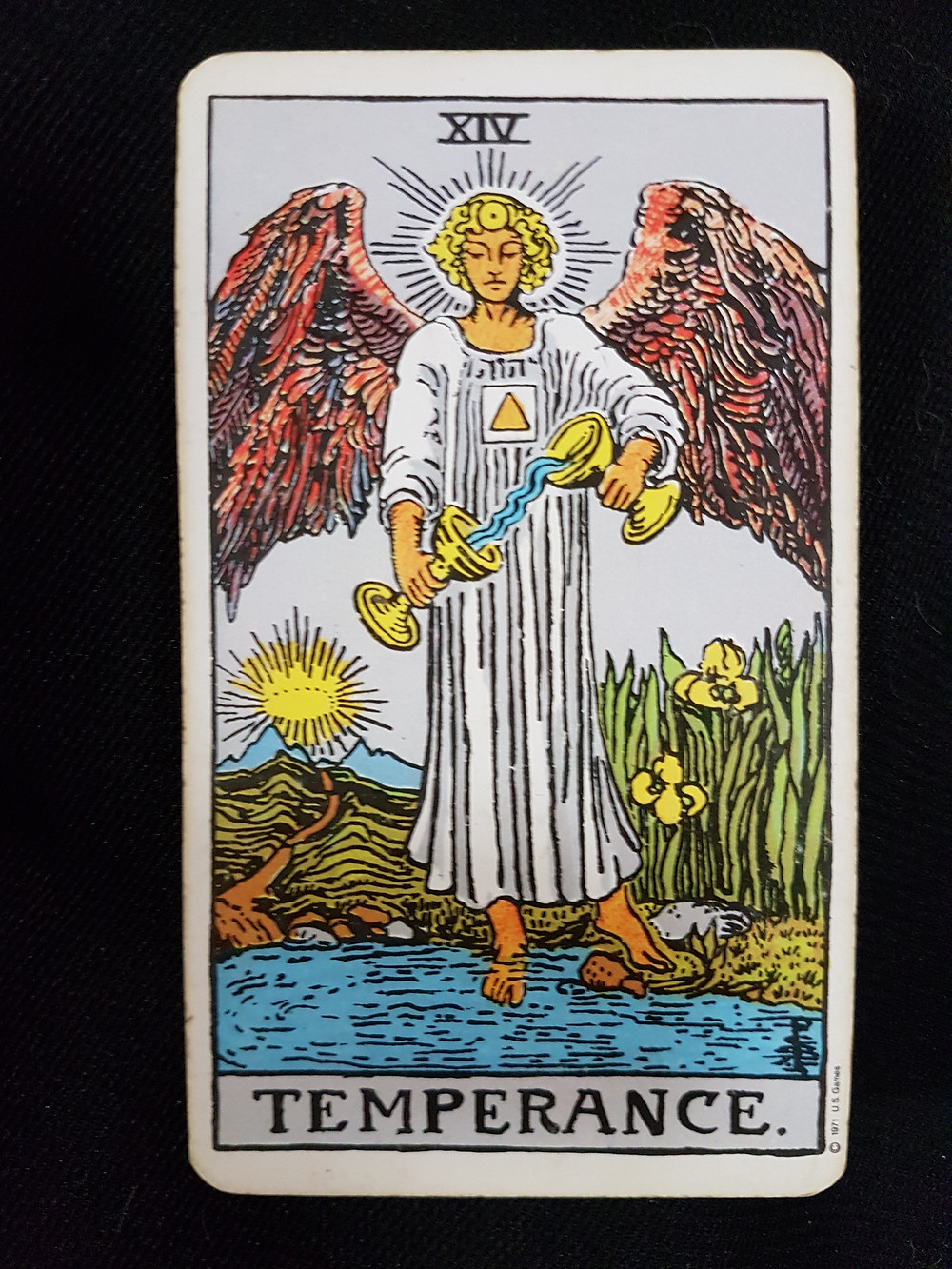 The Temperance Card No 14 | lynsreadings.com