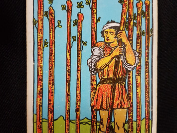 Meaning of The 9 of Wands