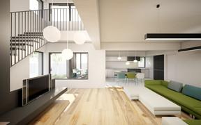 HOUSE NEAR PLOIESTI (8).jpg
