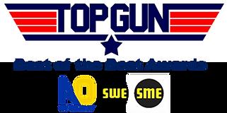 Top Gun Awards logo 2.png