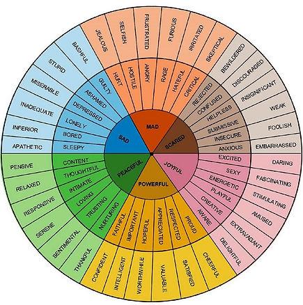 Using the Feelings Wheel