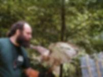 Steve Stone_Birds of Prey.jpeg