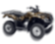 Camouflage ATV