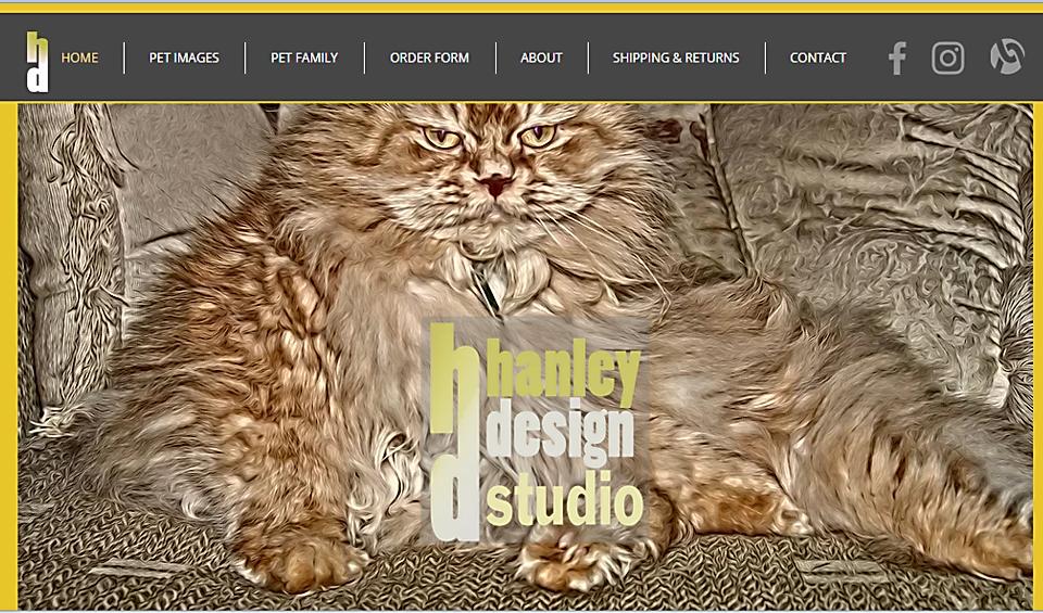 hanleydesigns.com