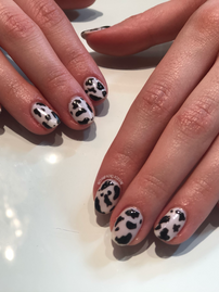 Cow nails - shellac