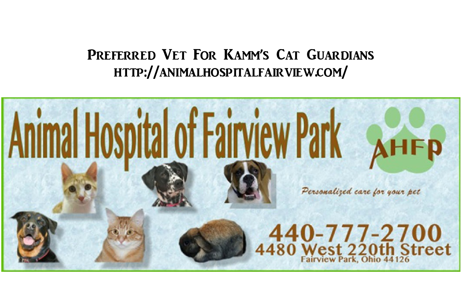 Copy of Animal Hospital of Fairview