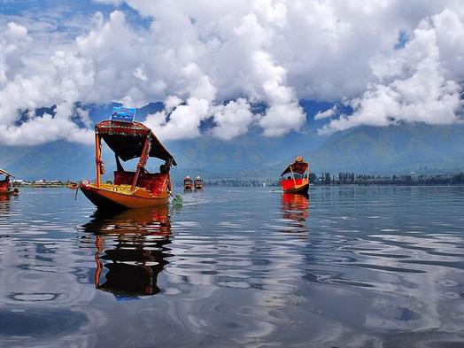 The environmental crisis in Kashmir