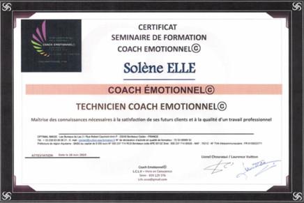 Coach émotionnel