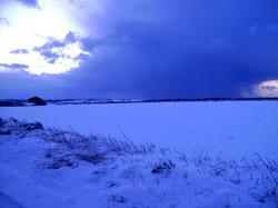 Local Farmland in Winter