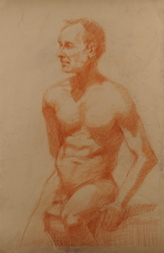 Figure (0354)