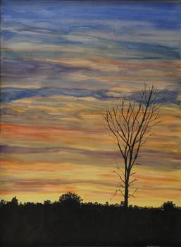 Watercolor (2370)