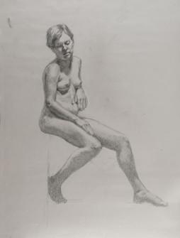 Figure (0357)