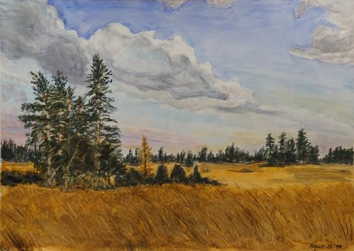 Watercolor (2423)