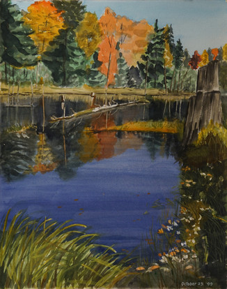 Watercolor (2429)
