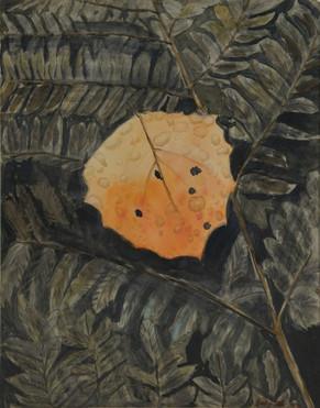 Watercolor (2392)