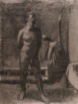 Figure (0366)