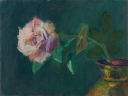 White Rose (study)