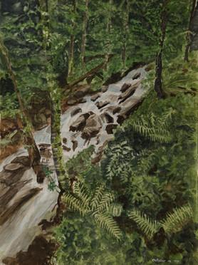 Watercolor (2426)
