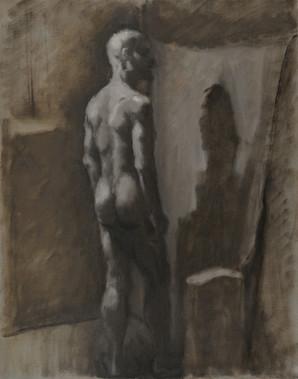 Figure (0316)
