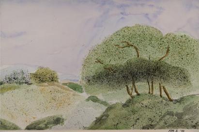 Watercolor (2381)