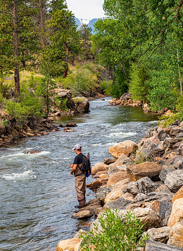 man fishing for trout on the banks of a