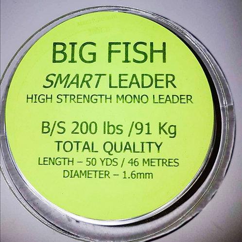 CJT Big Fish Smart Leader 200lb B/S 50yds