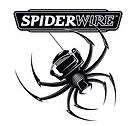 spiderwire.jpg