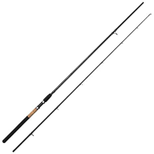 ron thompson 2 piece match fishing rod