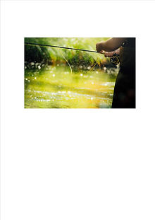 fly fishing column.jpg