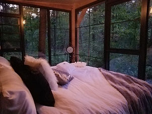 Wake up to the Forest