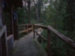 Ravine walkout Deck