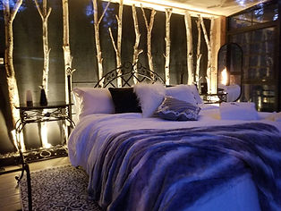 Magical birch feature wall