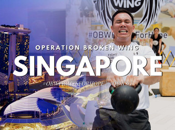 What is Operation Broken Wing?