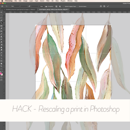Rescaling a print in Photoshop