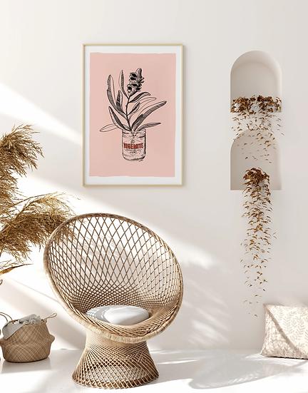 Vegemite Banksia