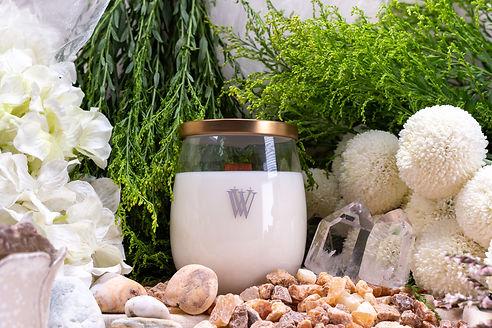 BAI YU LAN | FRAGRANCE | VIVAWANG® International | Fine Fragrances | Candles | Warmers | Taiwan